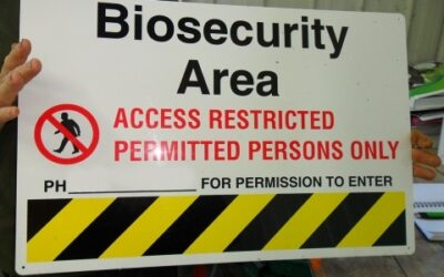 Have you got your on-farm biosecurity plan sorted?