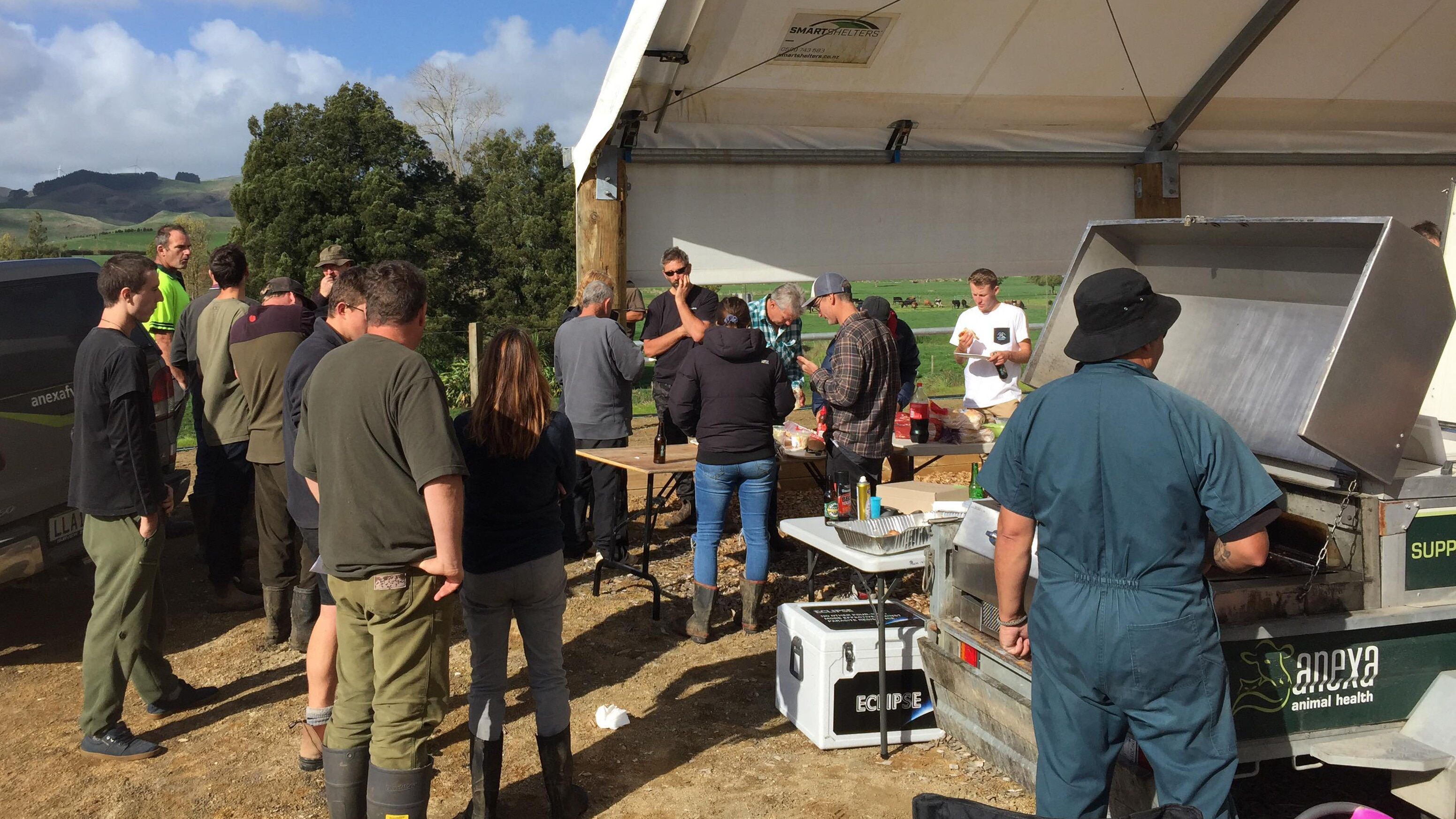 Sheep and Beef Discussion Group; Worm Day at Simpson Farms